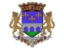 Héraldique. Les armes de Limay se blasonnent ainsi : d'azur au pont de trois arches d'argent maçonné de sable posées sur une onde de sinople mouvant de la pointe, surmonté en chef de trois fleurs de lys d'or posées 2-1. Ce blason adopté par la municipalité en 1967 est dû à l'héraldiste Robert Louis.