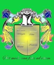 Wapenschild van de Families De Waele, Wechuysen,Godschalk,Frederickx,Brakels en Tokkie