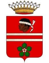 Furono Conti di Cassanio e di Stroppiana. — L'Avv. Giovanni, figlio del Capit. Giangiacomo. nel 1722 acquistava il feudo di Samonc con titolo comitale, e Giambattista di Vincenzo nel 1723 quello di Tornaforte nel contado di Nizza con titolo comitale. —
